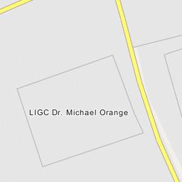 LIGC Dr  Michael Orange - Roslyn Estates, New York